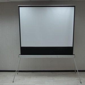 Экран напольный Projecta бу